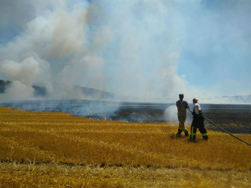 2 Hektar Feld abgebrannt