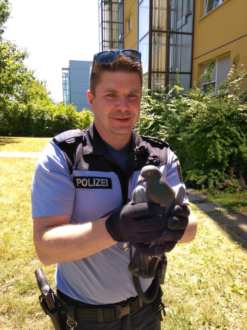 Polizeiarbeit einmal anders  Schlafzimmer-Besetzung unblutig beendet