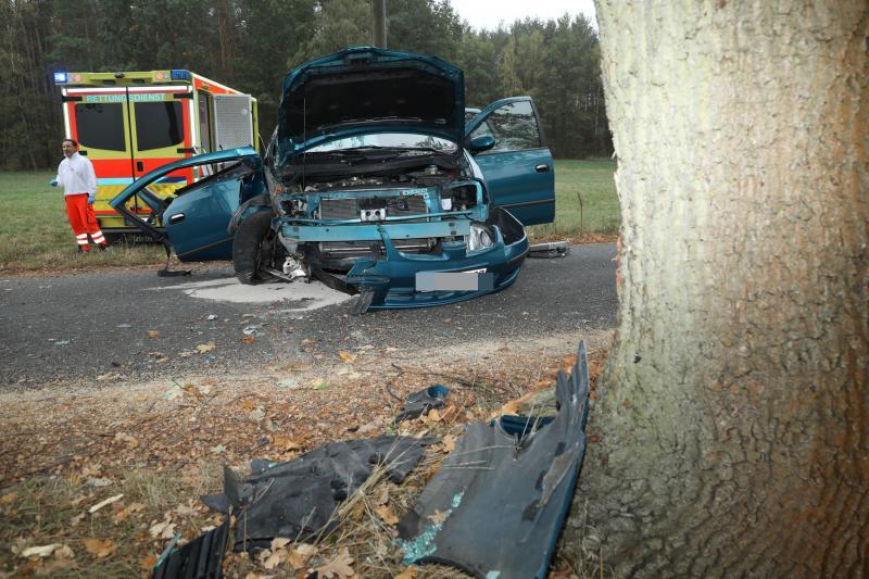 PKW prallte frontal gegen einen Baum