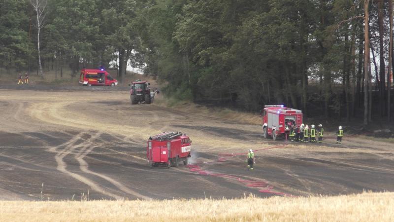 Infoupdate: Feldbrand sorgt für Großeinsatz der Feuerwehren