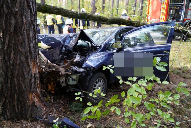 Pflegedienstfahrzeug prallt gegen Baum