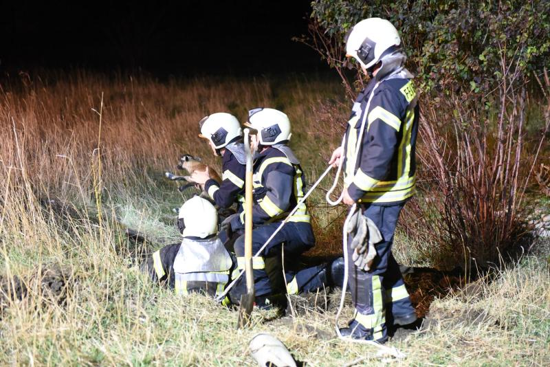 Tierischer Einsatz: Feuerwehr muss Lamm aus Schacht retten