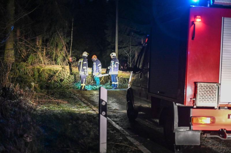 Baum fällt Sturm zum Opfer: Zufahrtsstraße zu Wohnhäusern blockiert