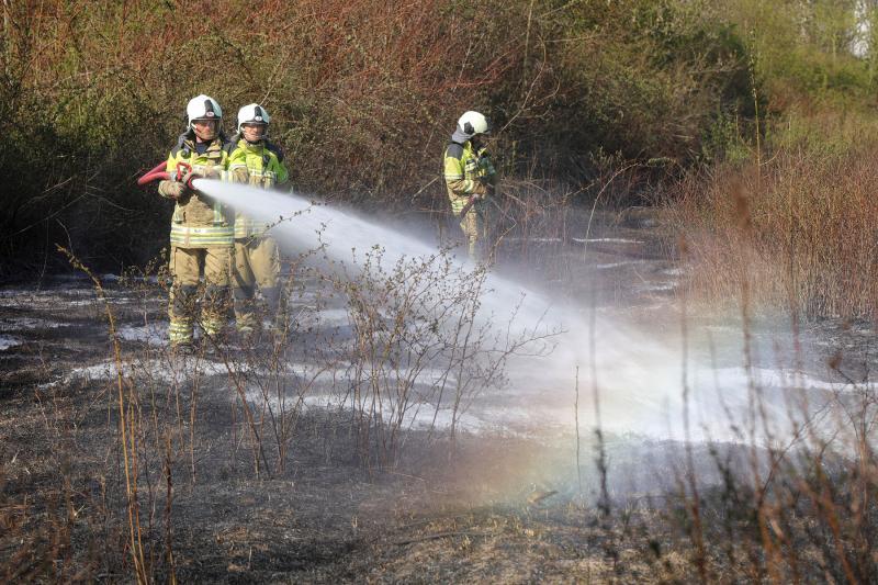6.000 qm Brachland brannten