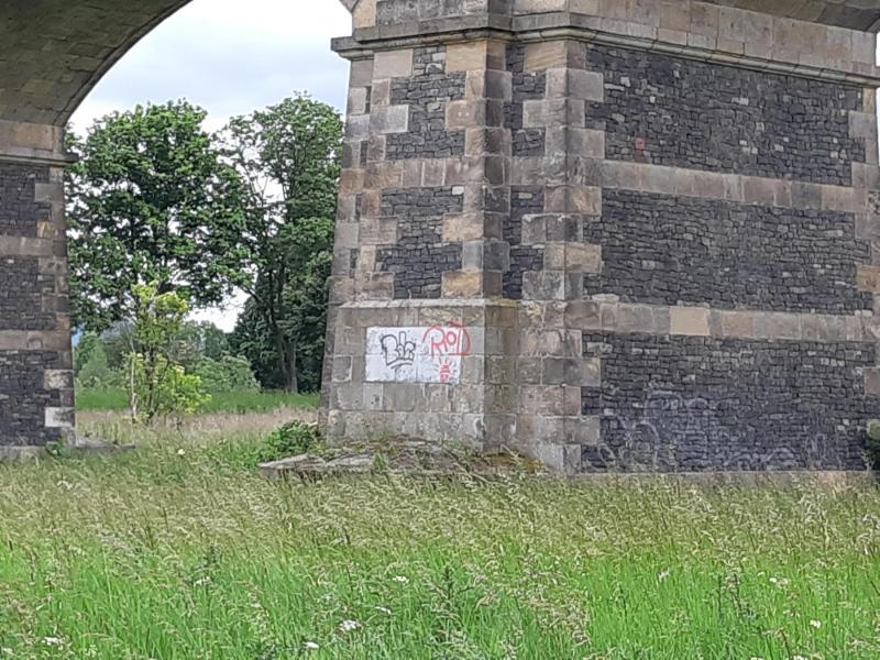 30 Graffitischriftzüge an Zittaus Bahnviadukt