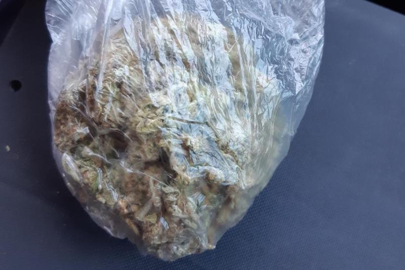 Marihuanageruch entlarvt Schmuggler mit 22 Gramm Cannabis