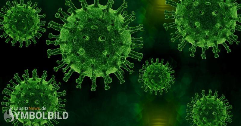 Corona-News: 97 Coronavirus-Neuinfektionen registriert