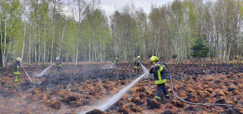 Brand im Moorgebiet