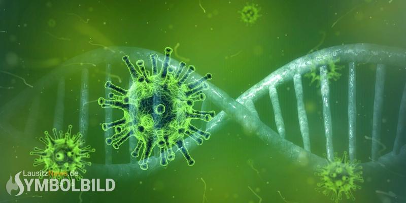 Corona-News: Vier Neuinfektionen, zwei Todesfälle im Landkreis Bautzen
