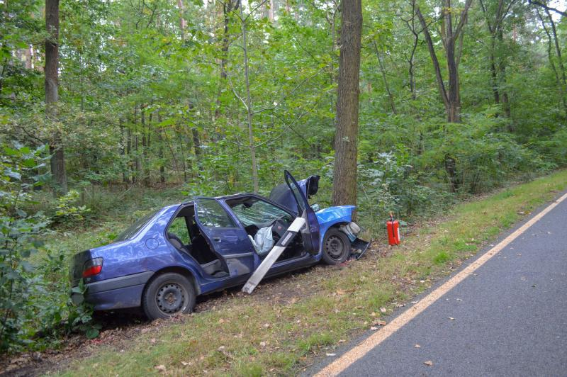 Peugeot prallt frontal gegen Baum: Fahrer und Hund sterben